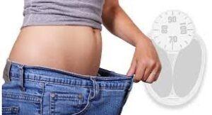 gm diet-fat to slim